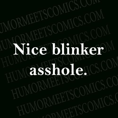 Nice-blinker-asshole.