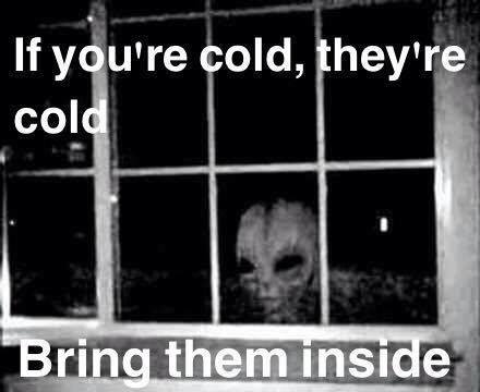 If you're cold they're cold bring them inside