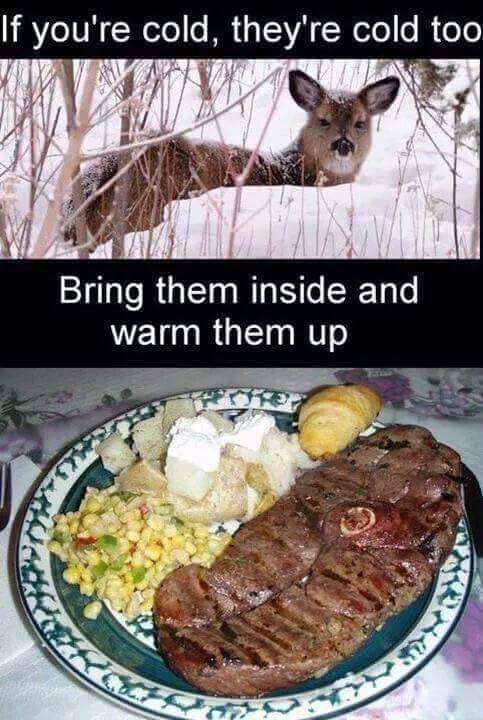 bring deer inside