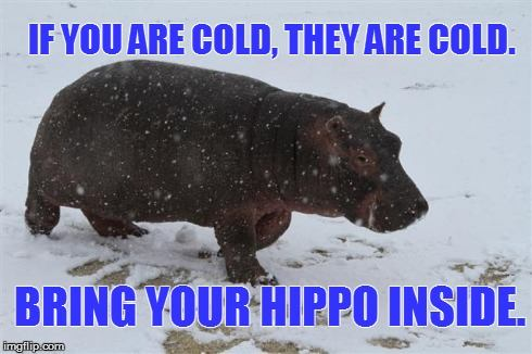 bring your hippo inside