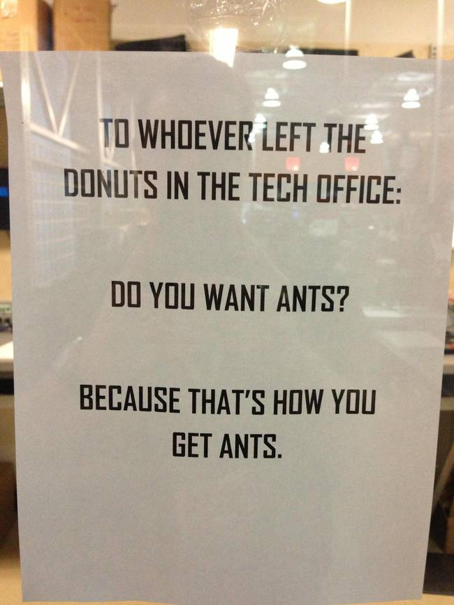 Do you want ants