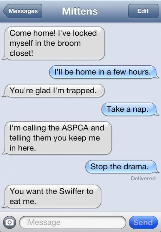 7 Examples Of When Cat Texts Humormeetscomics