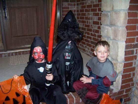 Bark Vader
