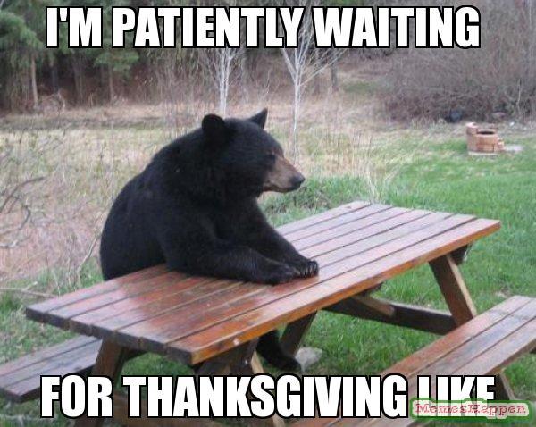 Thanksgiving memes 7