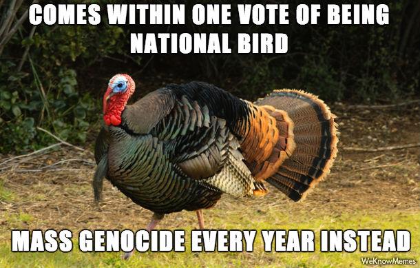 Turkey Memes 2