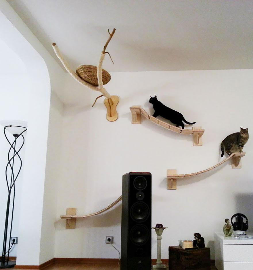 Must-See Images of a Cat Friendly Home of a Cat Crazy Person ...