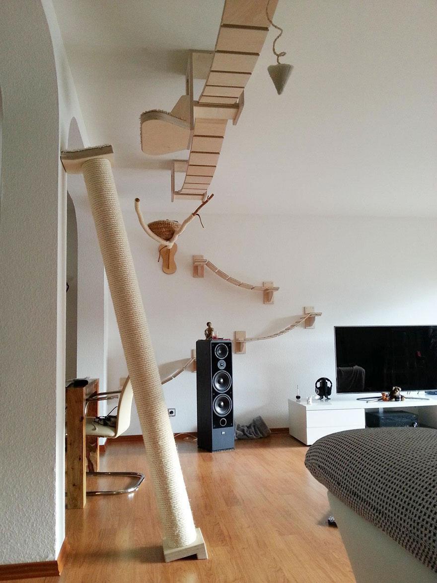 overhead-cat-playground-room-Goldtatze-TV