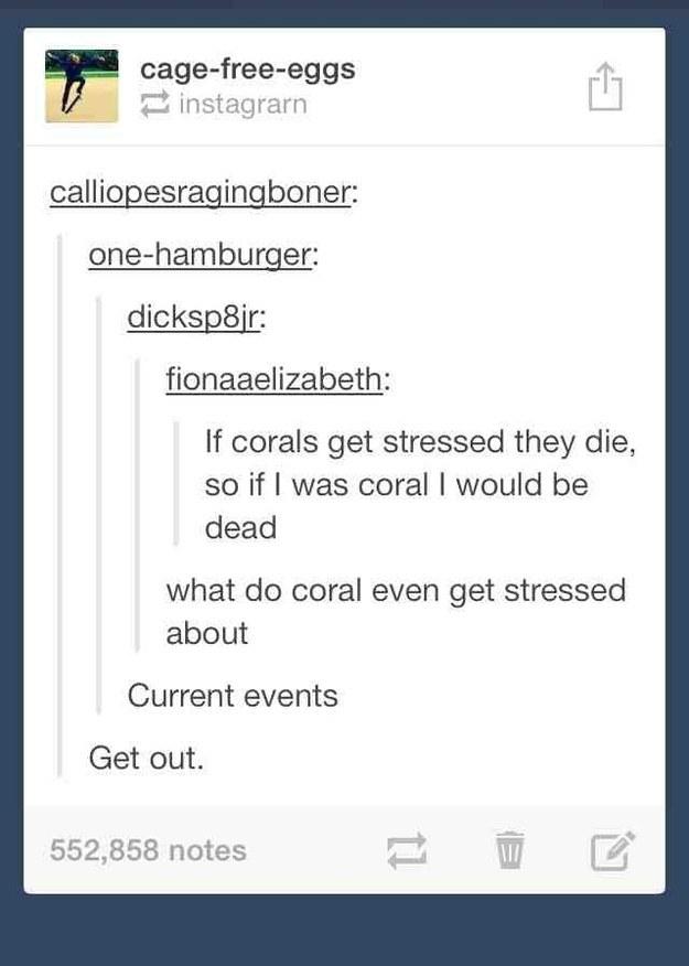 Coral worries