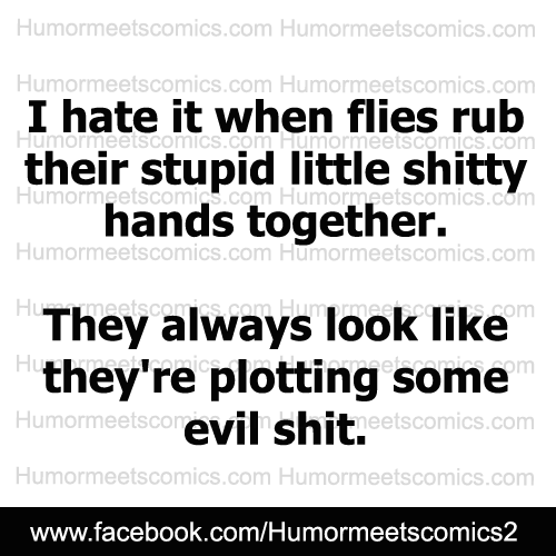 I-hate-it-when-flies-rub-their-hands