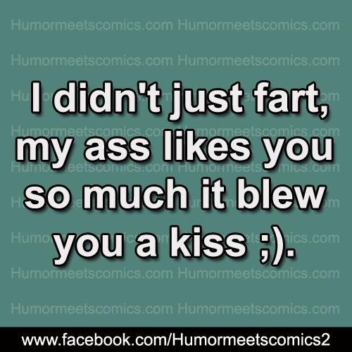 i-didn't-just-fart