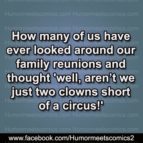 How many of us have ever looked around our family reunions