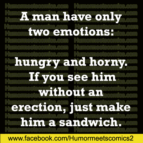 A-man-have-only-two-emotions