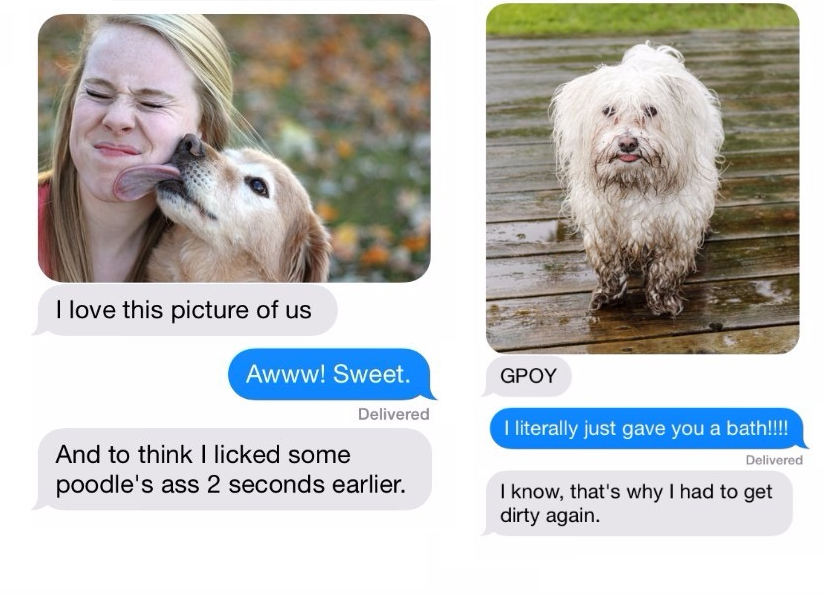 18 Plain Mean Texts That Can Be Sent to You By Your Dog!