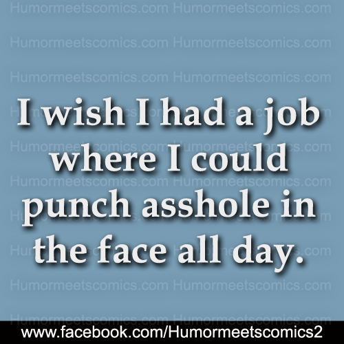 I wish I had a job where i could punch asshole in the face all day