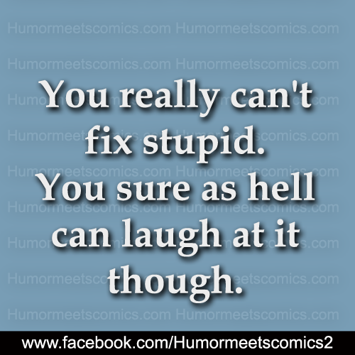 You-really-can't-fix-stupid